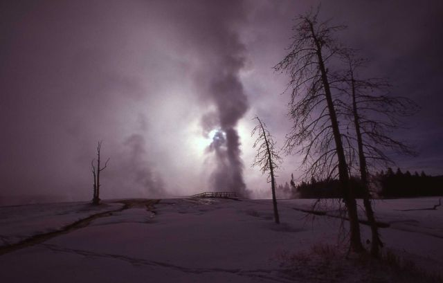 Near Castle Geyser in winter - Upper Geyser Basin Picture