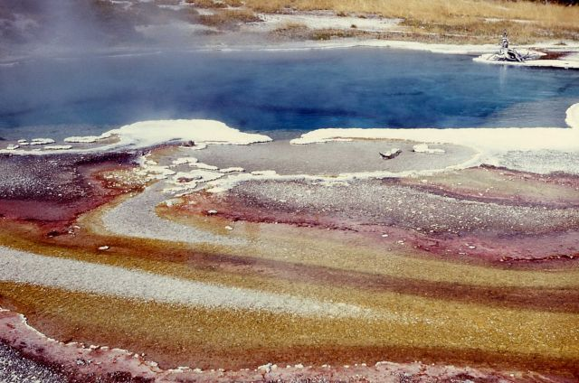 Columbia Spring - algae pattern in run off - Hot Springs, Heart Lake Geyser Basin Picture