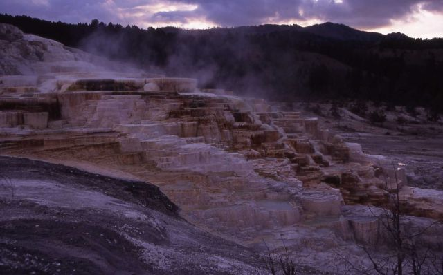 Minerva Hot Spring - Mammoth Hot Springs Picture
