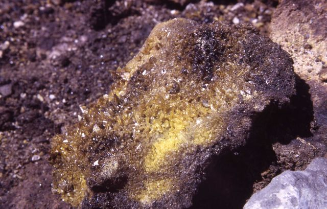 Oil stained sulfur crystals - Mineral deposits Picture