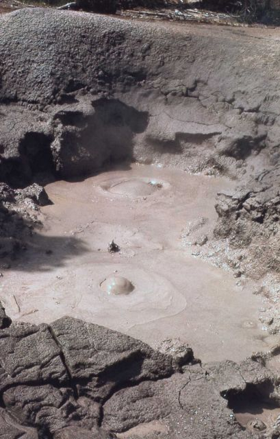 Mud pot near Sulfur Cauldron - Mud Volcano area Picture