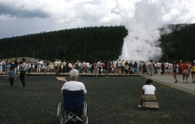 Visitor in wheelchair viewing Old Faithful Geyser Picture