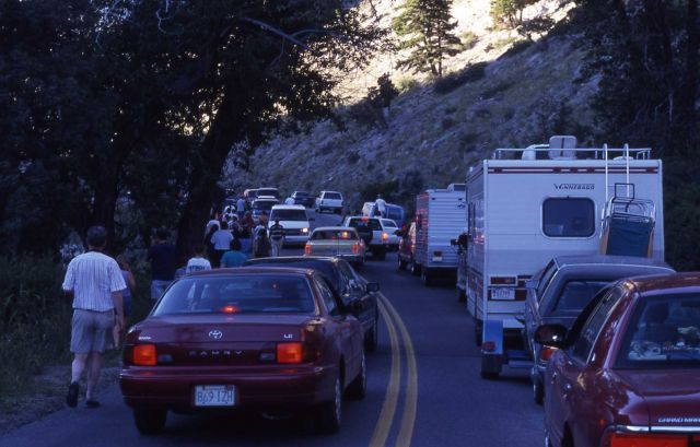 Traffic jam in Gardner Canyon Picture