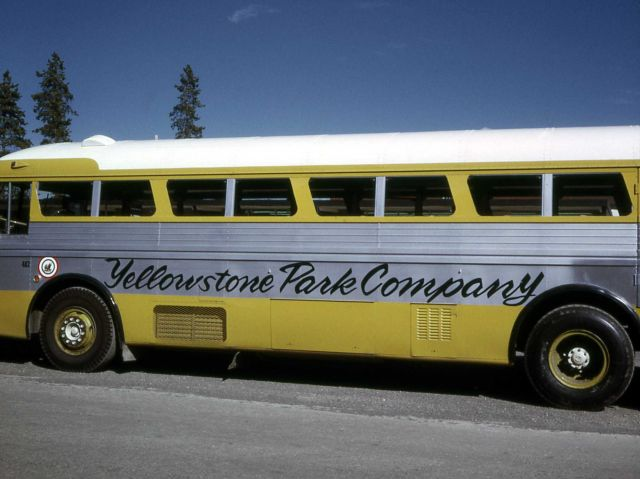 Yellowstone Park Company bus Picture