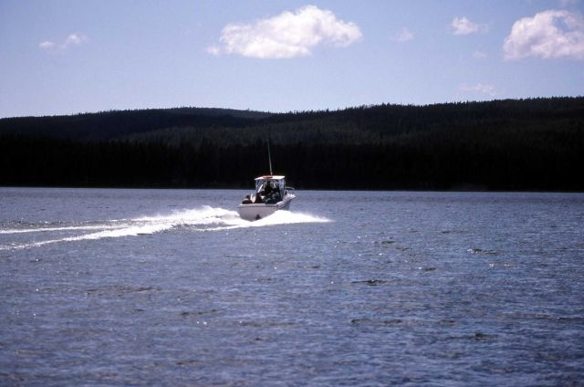 Fishing guide boat, The Grady White, on Yellowstone Lake during a Yellowstone Association birding class Picture