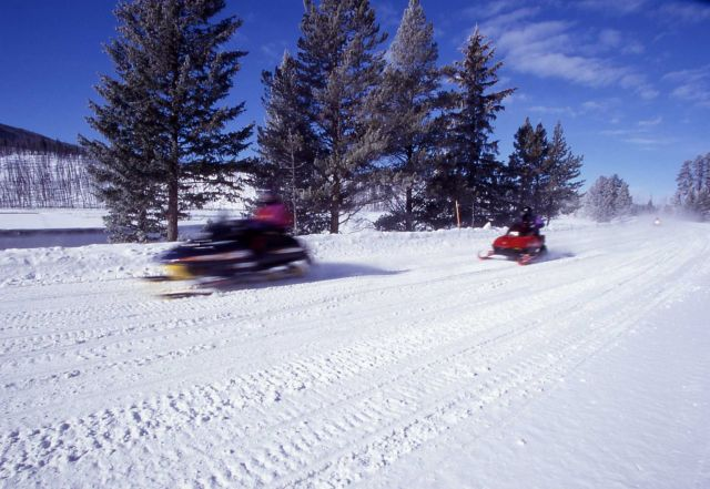 Snowmobiles on Madison/West entrance road in the winter Picture