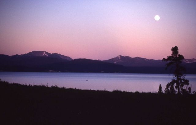 Moonlight on Yellowstone Lake Picture