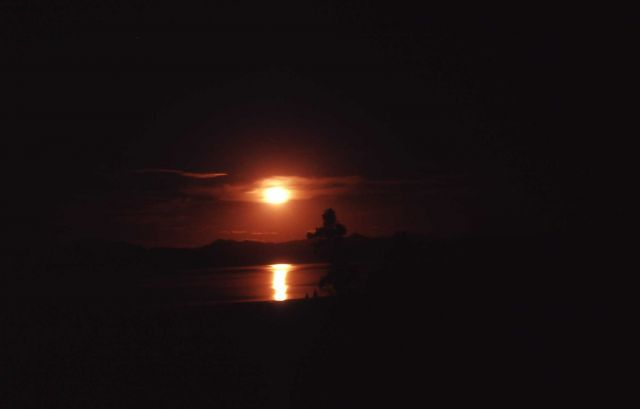 Moonrise on Yellowstone Lake Picture