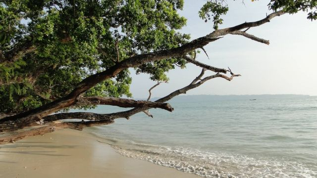Andaman and Nicobar Picture