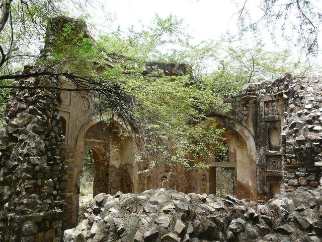 Mehrauli Archaeological Park, Delhi Picture