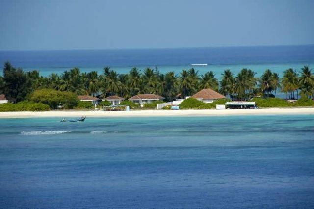 Corals And Serenity At Lakshadweep Picture