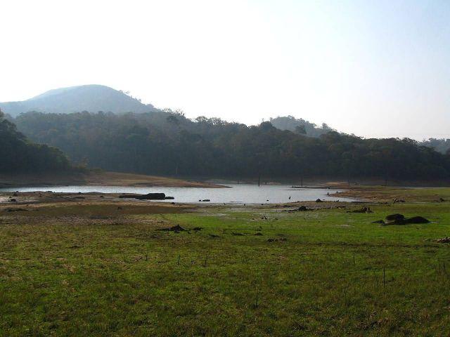 Thekkady, Kerala Picture