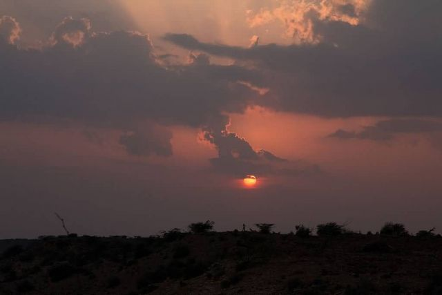 Sand Dunes, Jaisalmer Picture