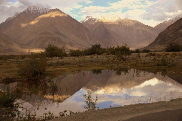 Diskit Nubra Valley, Ladakh Picture