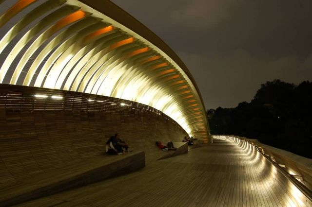 Henderson Waves - Singapore Picture