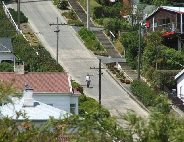 Baldwin Street - New Zealand Picture