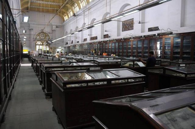 Indian Museum, Kolkata Picture
