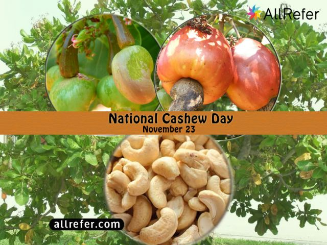 Happy National Cashew Day - 23 November Picture