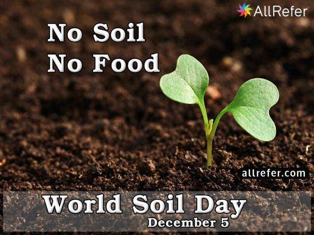 World Soil Day - 5 December Picture
