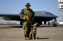 Corporal Baker is a K-9 - Green Lighting tests Pacific bomber force Photo