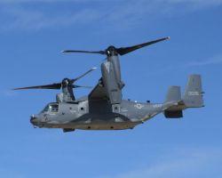 Kirtland Air Force Base - Osprey Photo
