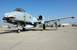 A-10 Thunderbolt II - Iraqi Freedom Photo