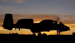 A-10 Thunderbolt II - Thunderbolt II at rest Photo