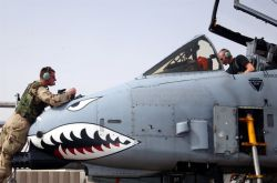 A-10 Thunderbolt II - Thunderbolt check Photo