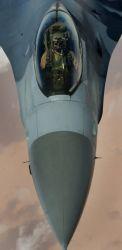 F-16 Fighting Falcon - Falcon driver Photo