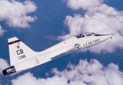 T-38 Talon - Talon Photo
