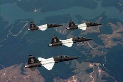 T-38 Talons - Quad Talons Photo