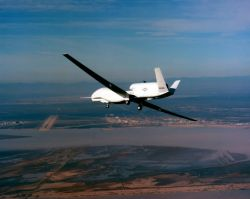 Global Hawk - Global Hawk Photo