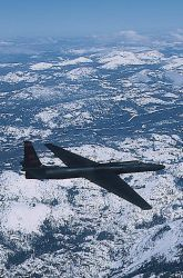 U-2 aircraft - U-2 Dragon Lady Photo