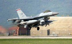 F-16 Fighting Falcon - Deployed Falcon Photo