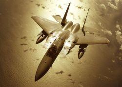 F-15C - Golden fighter Photo