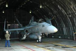 F/A-18 Hornet - Hornets swarm Osan Photo