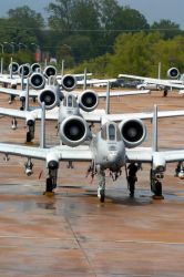 A-10 Thunderbolt II - Hawgsmoke 2004 Photo