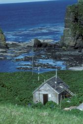Agattu Island, refuge cabin, Aleutians 1988 Photo