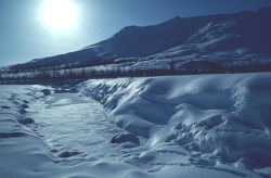 Wind River in Winter Photo