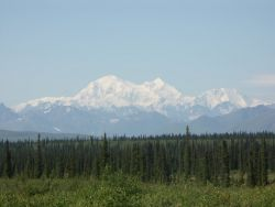 Mt. McKinley, Denali Photo