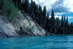 Kenai River Riverbank Photo