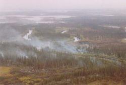 Lower Mouth Fire on Yukon Flats NWR Photo