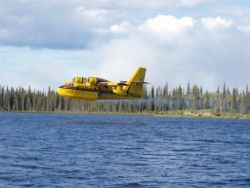 Waterbomber CL-215 scoops water Photo
