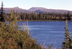 Lake at Junction of Selawik River and Ingruksuk River Photo