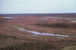 Yukon Flats Panorama Photo