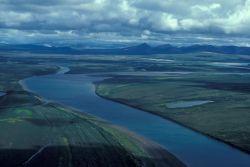 Noatak River Flats in Summer Photo