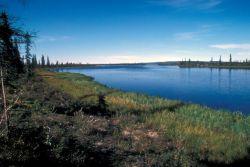 Selawik River Photo