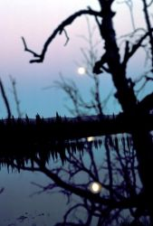 Moon Reflection on Lake Photo