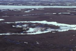 Yukon Delta Photo