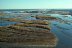 Yukon River Fall Colors - Aerial View Photo